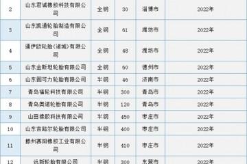山东15家企业2830万条轮胎淘汰